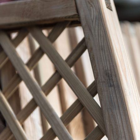 Trellis and Fencing